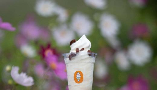 """積丹にある「CAFE STAND窓」から""""香りで味わう""""という新たなソフトクリーム『積丹コーラ ソフトクリーム』が発売!"""