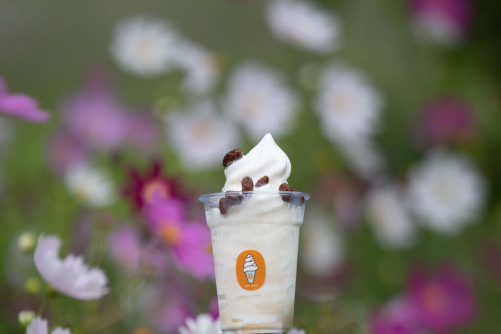 CAFE STAND窓の『積丹コーラ ソフトクリーム』